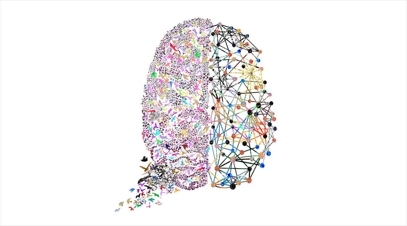 The Brains Behind Behavioral Science