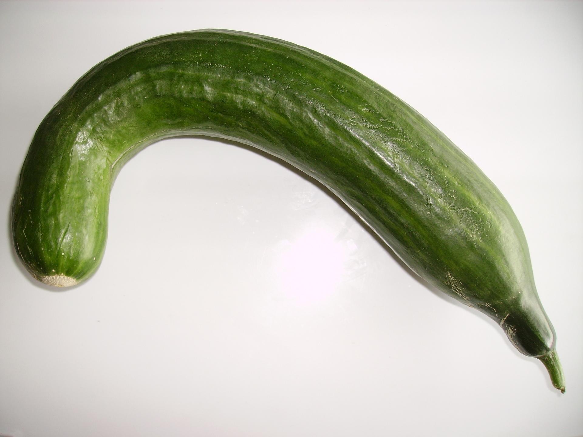 File:Bended cucumber.jpg