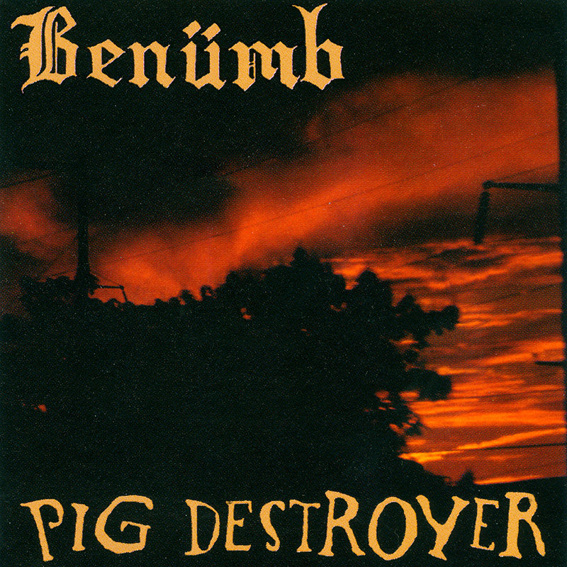 BENUMB / PIG DESTROYER - Split