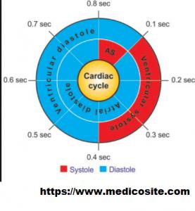 Cardiac Cycle time duration