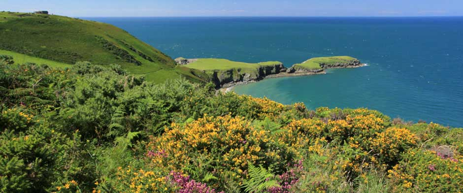 Cardigan Bay Coast and Countryside