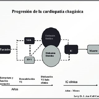 Progresión de la cardiopatía chagásica.