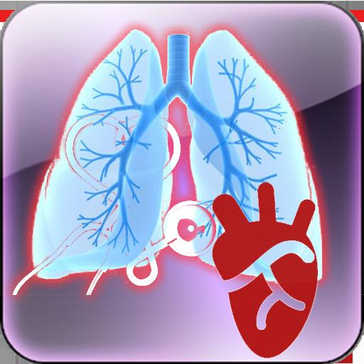 Cardiopulmonary Murmur Cardiopulmonary Murmur Cardiopulmonary Murmur  Cardiopulmonary