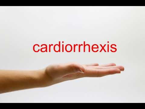 How to Pronounce cardiorrhexis - American English