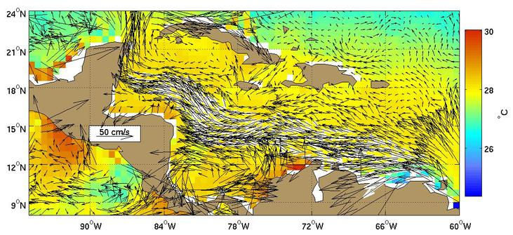 Figure 2. Global Ocean Surface Velocities from Drifters (top panel w/ SST,  bottom panel w/ Speed) Figure Caption is Under Construction.
