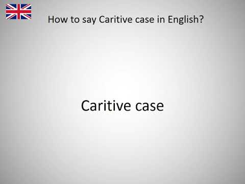 How to say Caritive case in English?