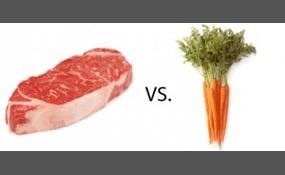 Carnivorism or vegetarianism
