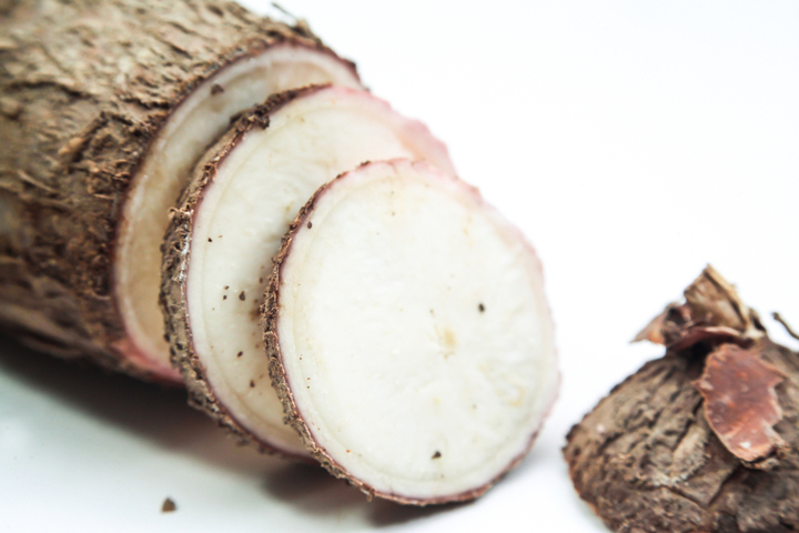 Cassava is known by many other names: manioc, mandioca, yuca, tapioca.