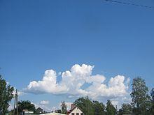 Figure 3: Cumulus castellanus. Rocket cloud (that could also be called  stratocumulus castellanus) generating no usable lift in soaring