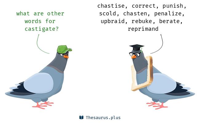 castigate Synonyms, castigate Antonyms