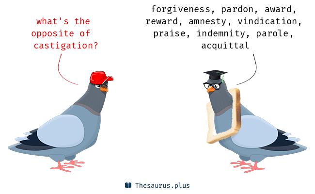 castigation Synonyms, castigation Antonyms