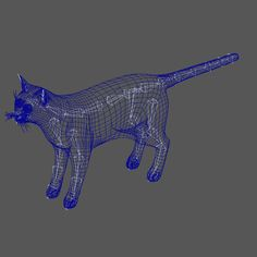 Cat_wire. Samira Rashidi · cat rig
