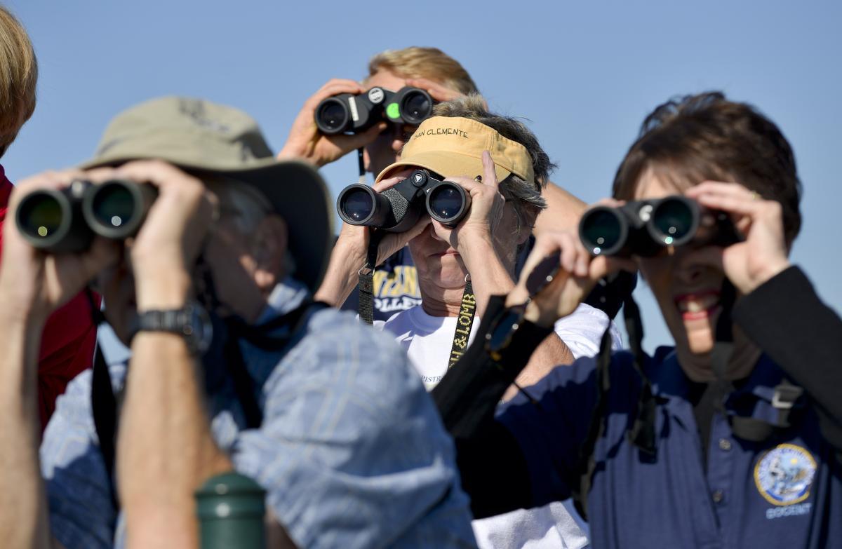 During a 2013 hike at the top of Hilltop Park whales were spotted along the  coast, which prompted hikers to gaze out through their binoculars.