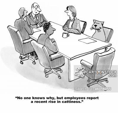 Cattiness cartoon 6 of 15
