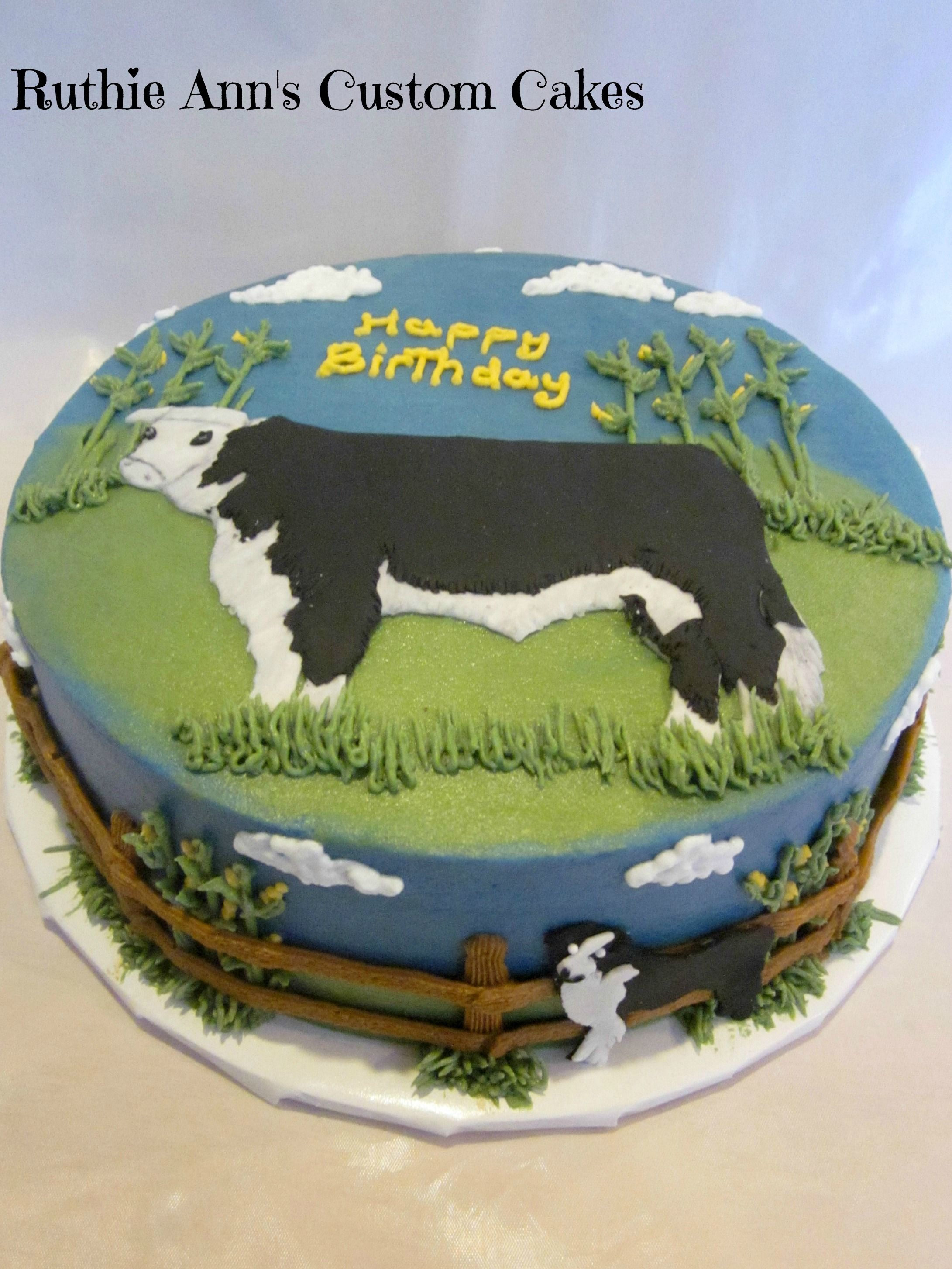 Cattle Farmer Cake - Cake made for a cattle farmer, beef cow with faithful  border collie dog made of fondant, fence, corn, and grass bc frosting.