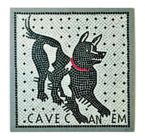 Resin Magnet - Cave Canem (