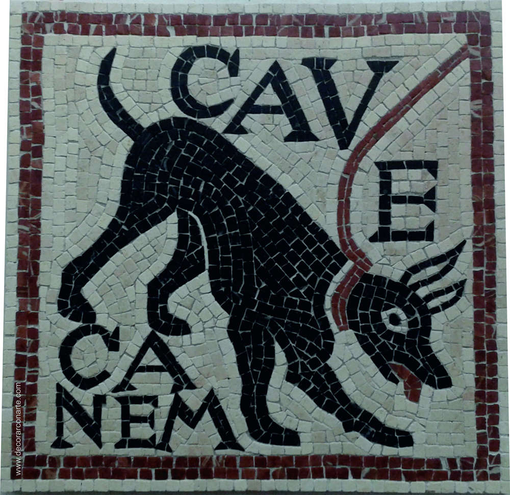 Cave Canem 40x40cm