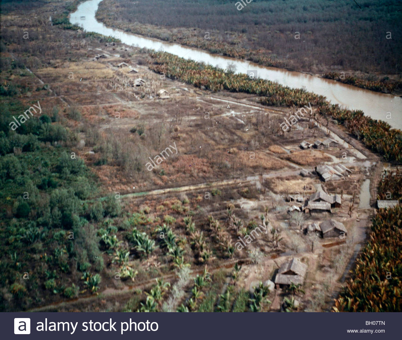 Photo depicts deterioration of vegetation, likely caused by Agent Orange or  a similar defoliant used during the Vietnam War.