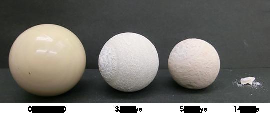 Degradability of Kuredux® PGA ball in water