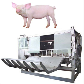 Slaughtering Equipment Automatic Pig Dehair Machine Hog Cleaning Machine -  Buy Pig Dehair Machine,Hog Cleaning Machine,Automatic Pig Dehair Machine  Product