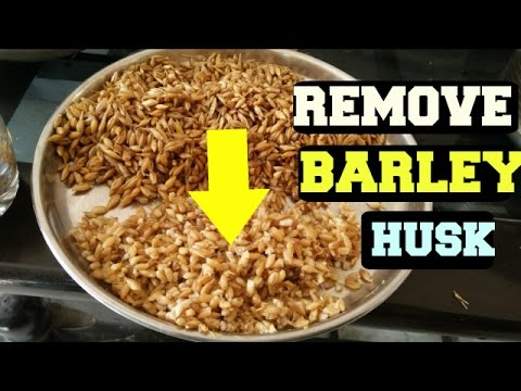How To DE HULL BARLEY/Remove HUSK From Barley/Easy Way To Remove Hull/Husk  Of Barley