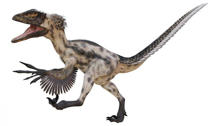 Deinonychus Facts: Extinct Animals of the World