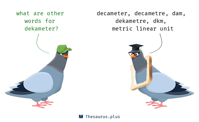 Synonyms for dekameter