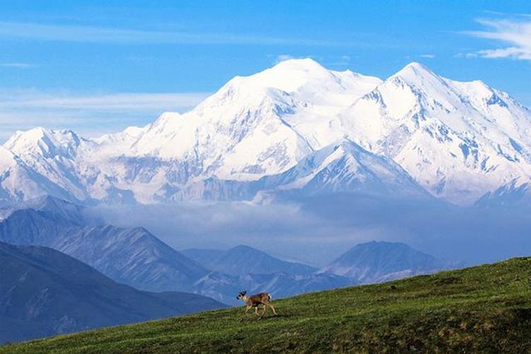 (Courtesy of the National Park Service/Daniel A. Leifheit)