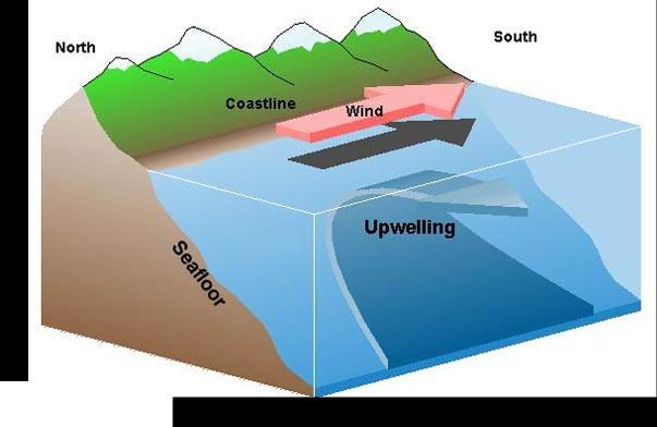 shows upwelling off the coast of Peru.