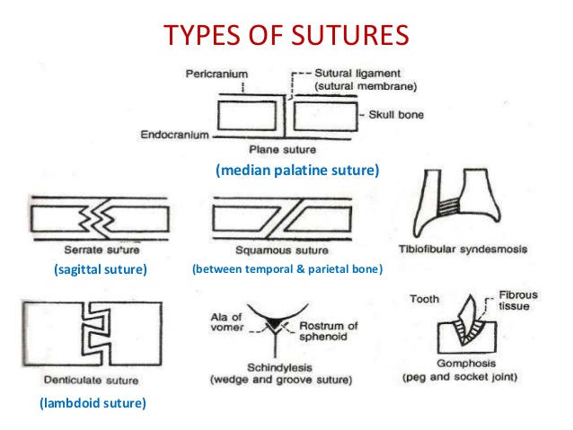 8. TYPES OF SUTURES
