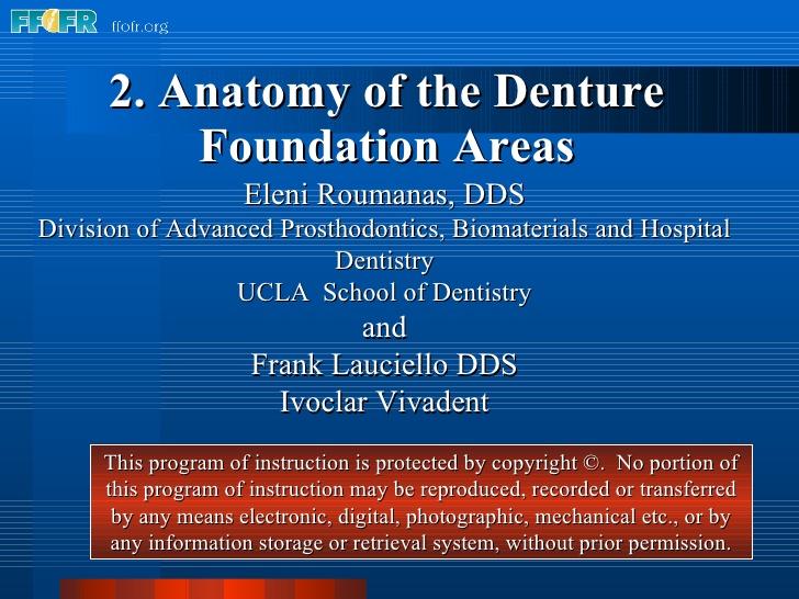 Anatomy of the Denture Foundation Areas Eleni Roumanas, DDS Division of  Advanced Prosthodontics