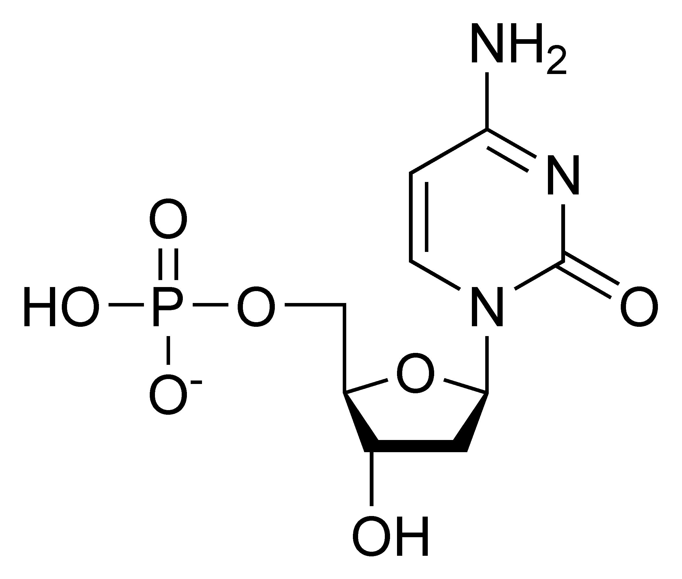 deoxycytidylic acid