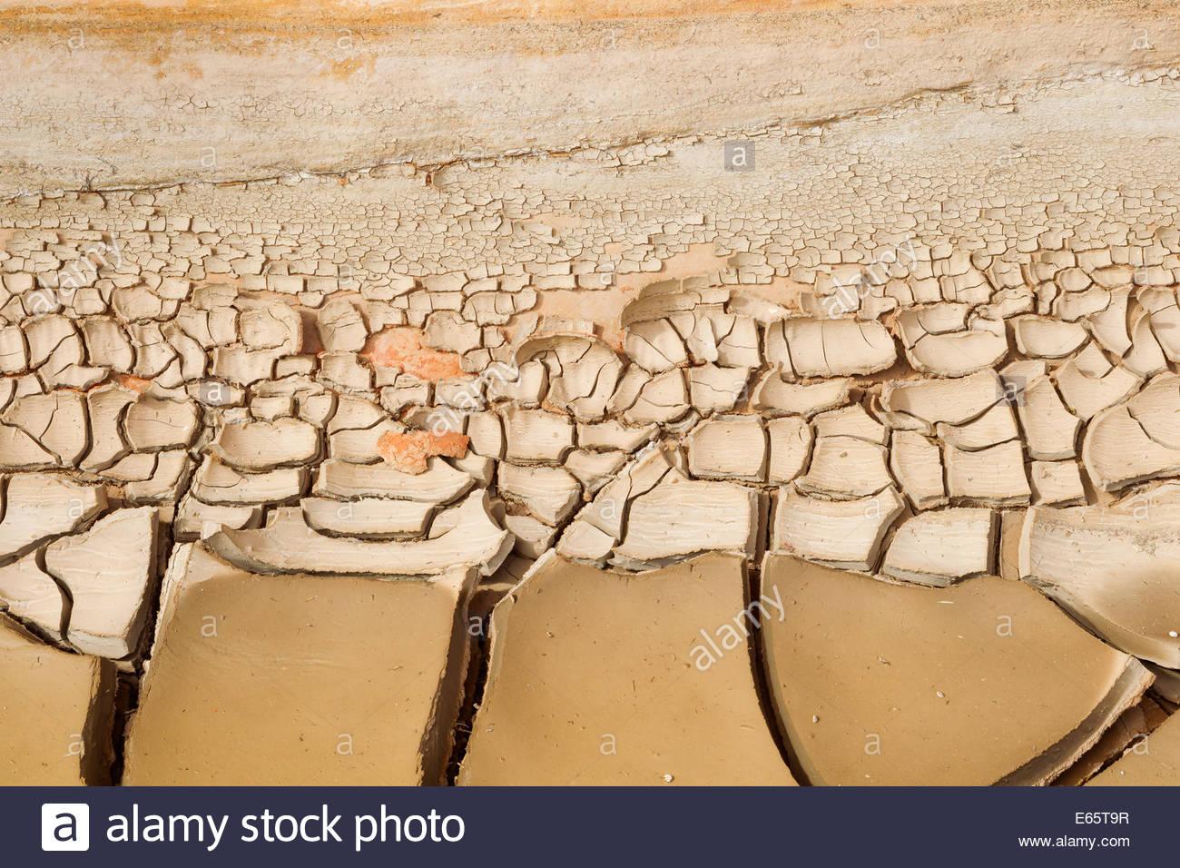Mudcracks en una variedad de formas y tamaños, y son visibles en el  sedimento en
