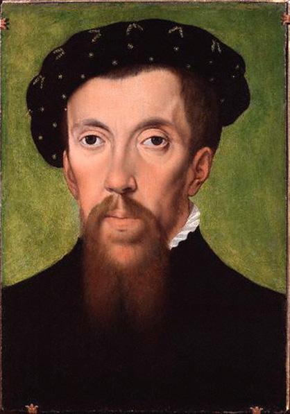 Portrait of Henry Howard, Earl of Surrey. NPG.
