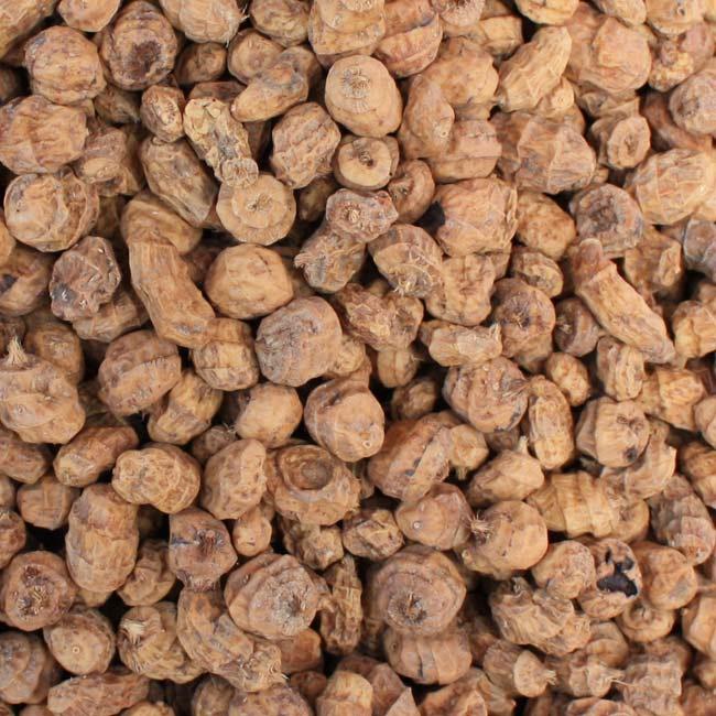 earth almond