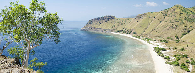 East Timor Destination Guide