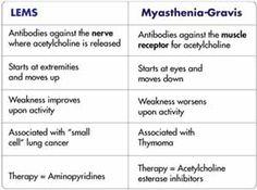 Lambert Eaton Myasthenic Syndrome (LEMS) is an autoimmune neuromuscular  disorder affecting the presynaptic neuromuscular junction.