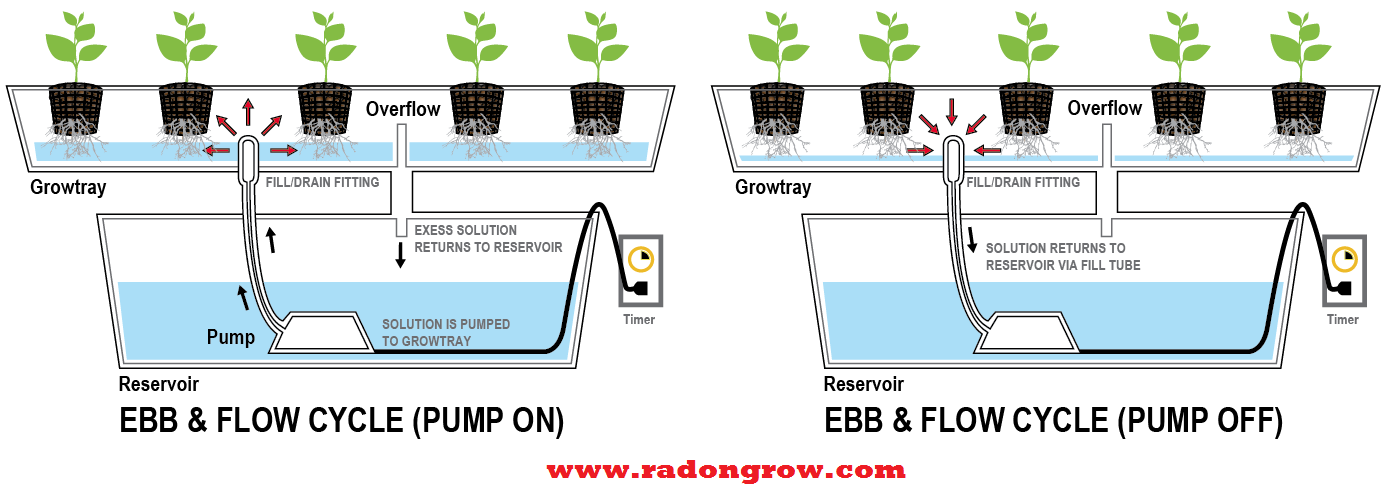Ebb and flow or flood and drain sub-irrigation