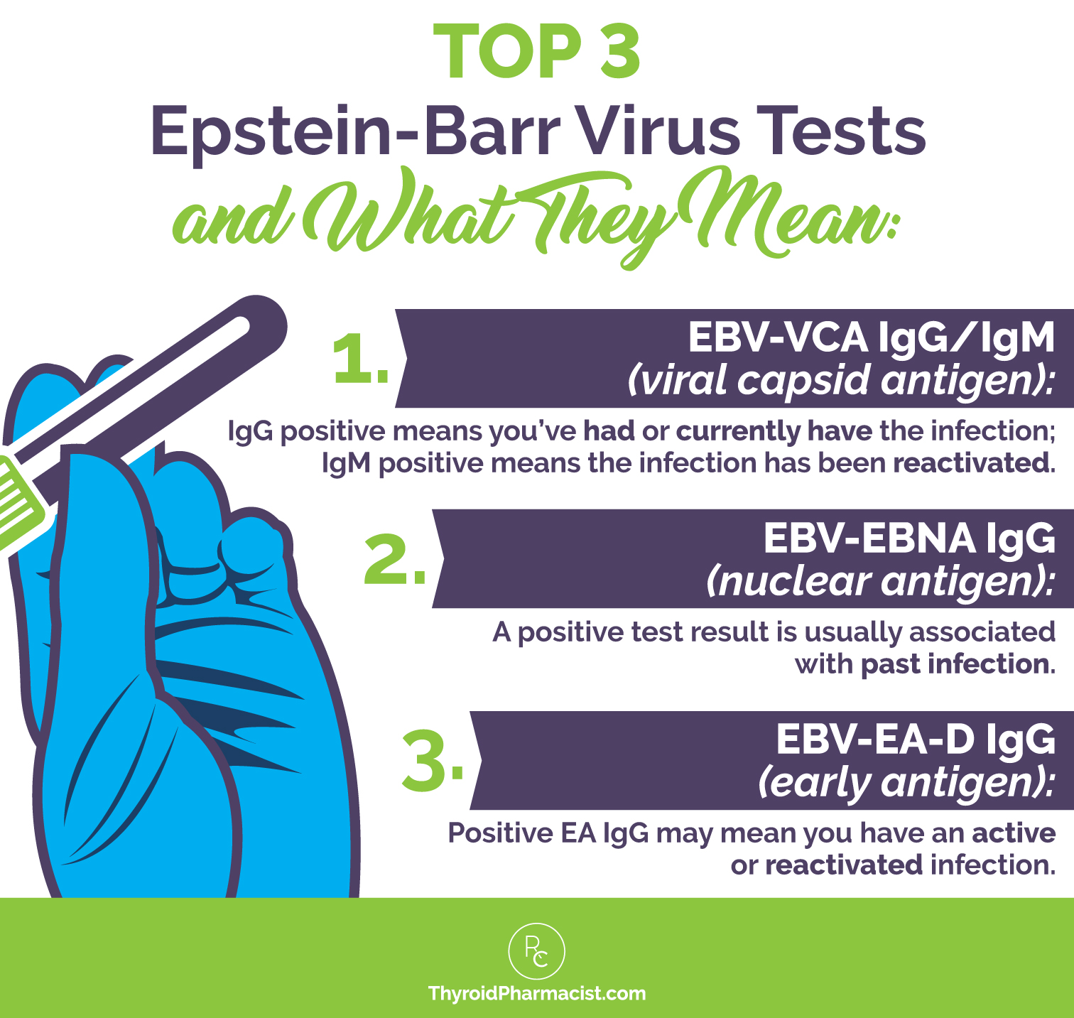 EBV-EA-D IgG (early antigen): Positive EA IgG may mean you have an active  or reactivated infection.