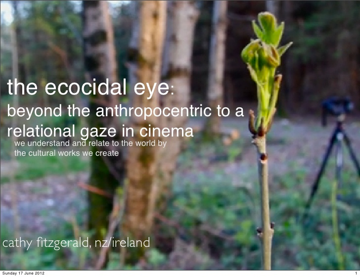 the ecocidal eye: beyond the anthropocentric to a relational gaze in cinema  we understand and