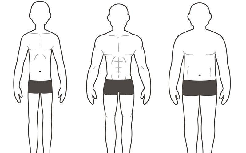 Your Body Type: Ectomorph, Mesomorph or Endomorph?