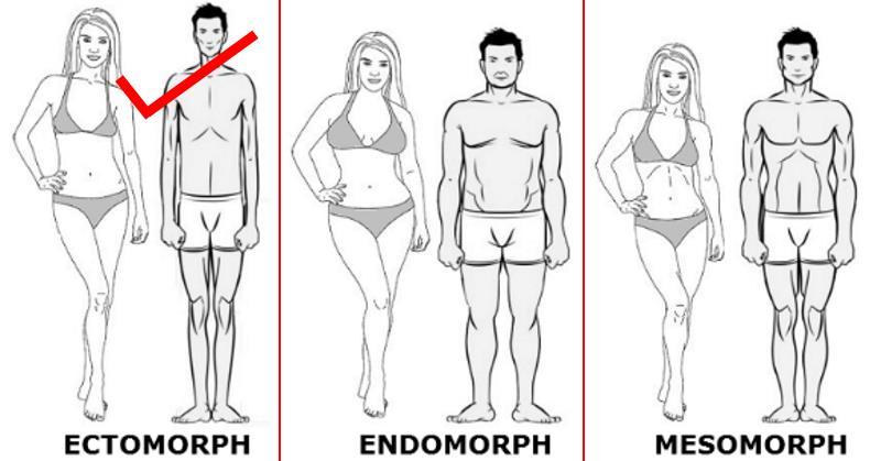 ectomorph-diet
