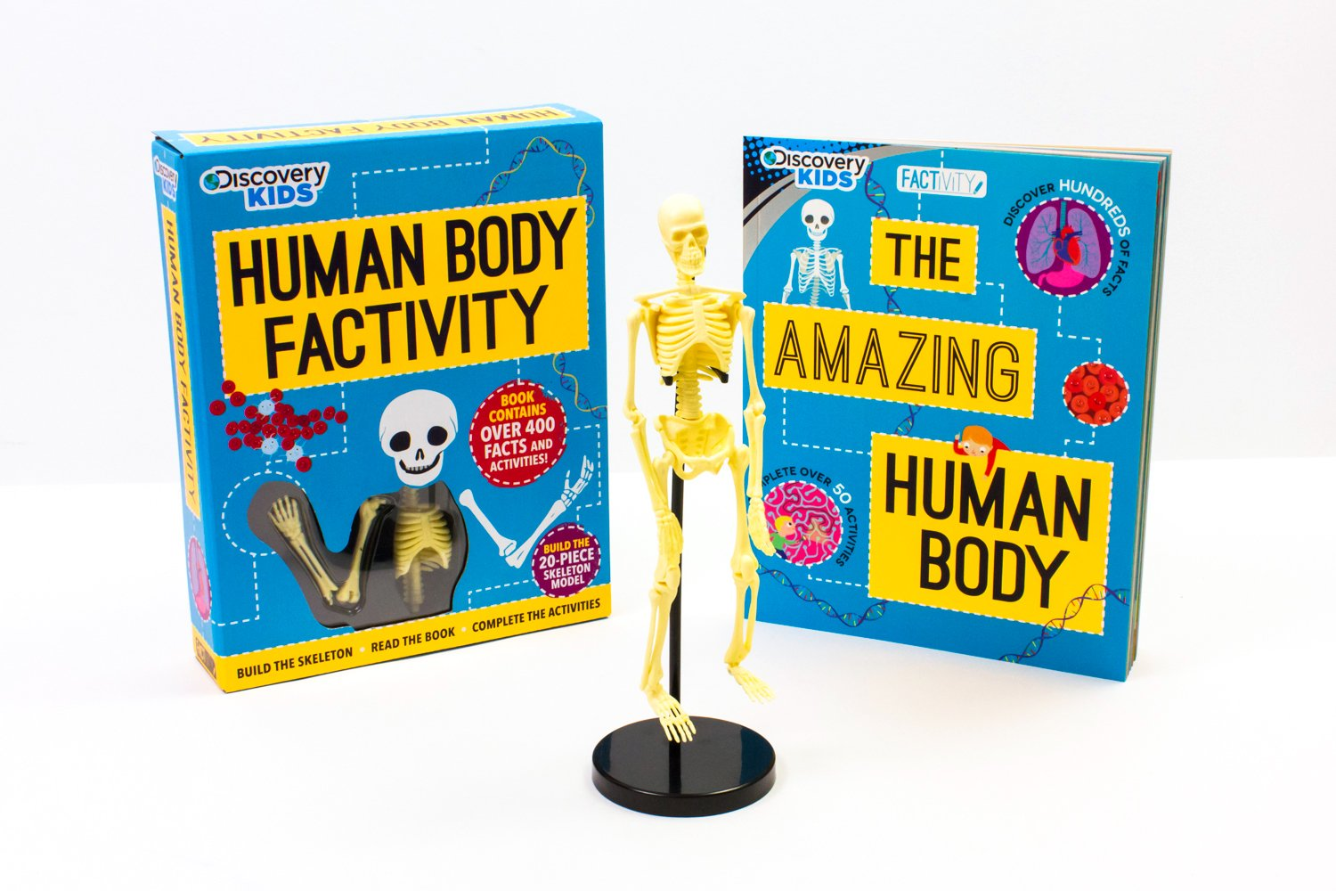 Discovery Human Body Factivity: Build the Skeleton, Read the Book, Complete  the Activities Discovery Kids: Traveller Location.uk: Anna Claybourne, Mar Ferrero,