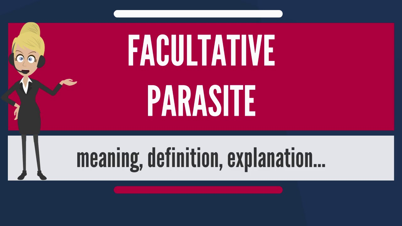 What does FACULTATIVE PARASITE mean? FACULTATIVE PARASITE meaning