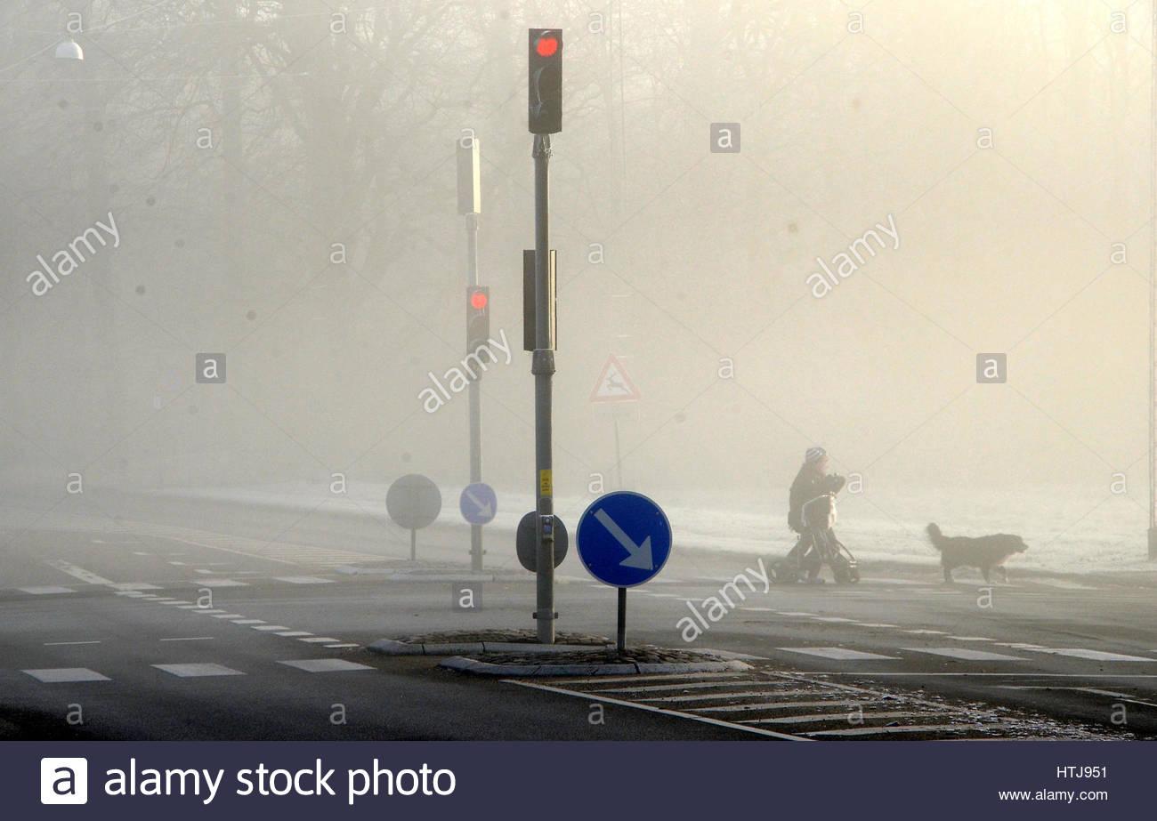 Semáforo en niebla tigt débilmente visible, algunas personas con un perro  están cruzando la carretera