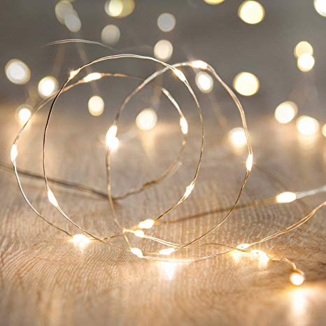 LED Fairy String Lights,ANJAYLIA 10Ft/3M 30leds Firefly String Lights  Garden Home Party