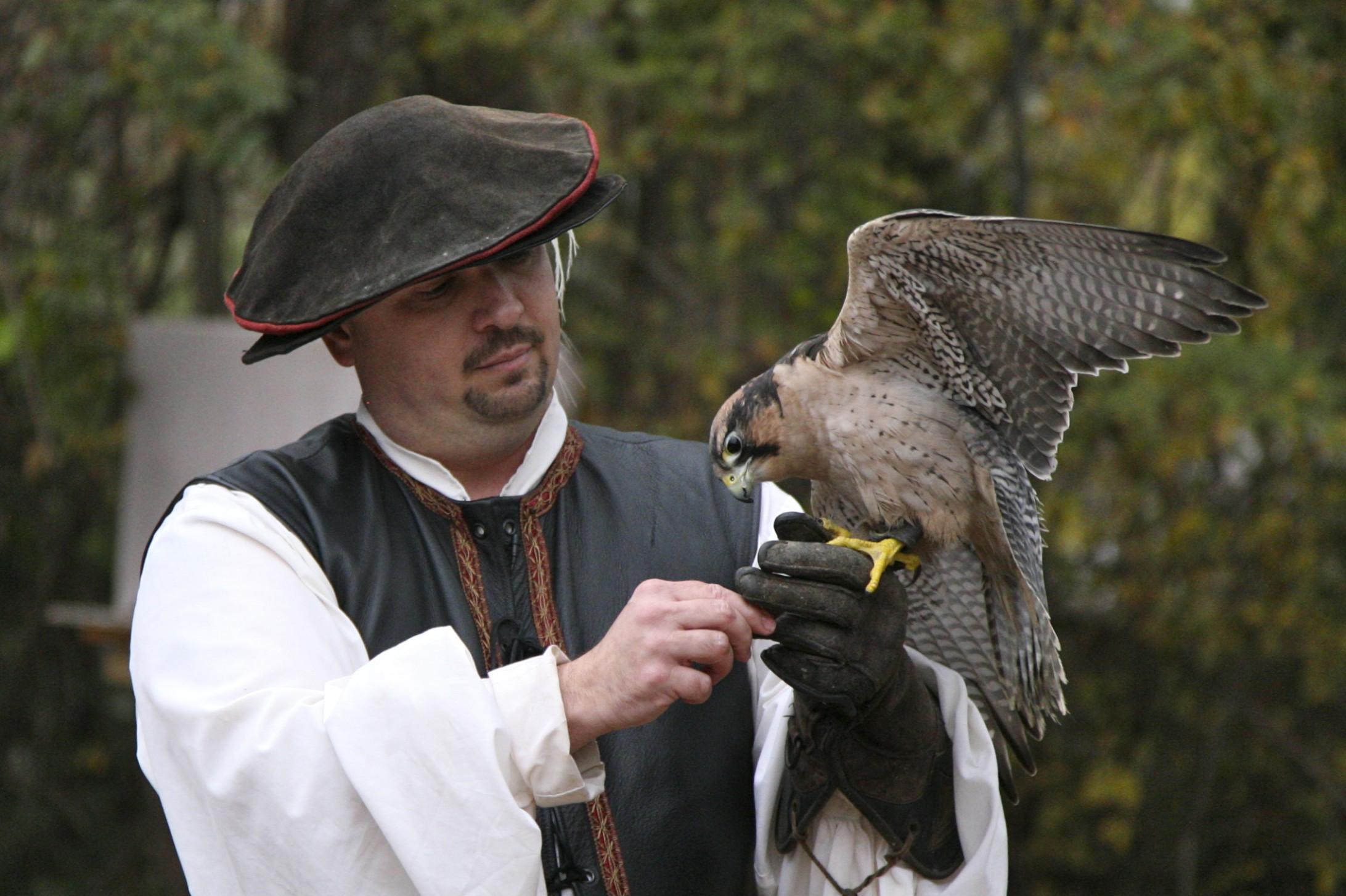 File:TRF falconer.jpg