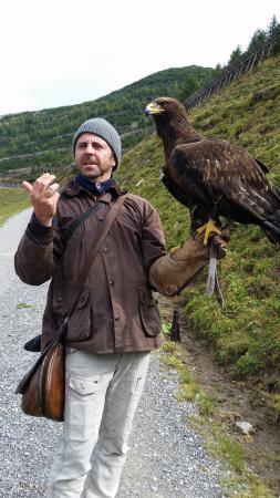 Galina Falcon Center: Expert falconer and his majestic mistress