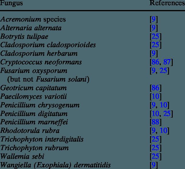 Non-Aspergillus fungi causing false-positive galactomannan ELISA reactions