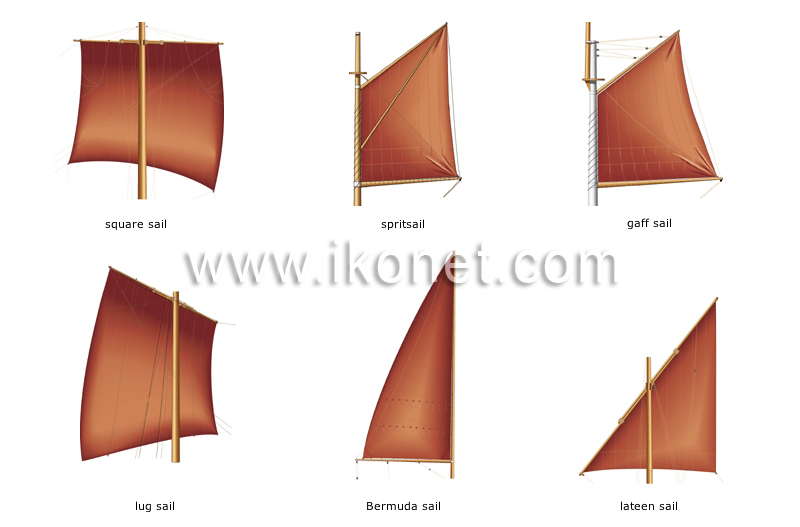 examples of sails image